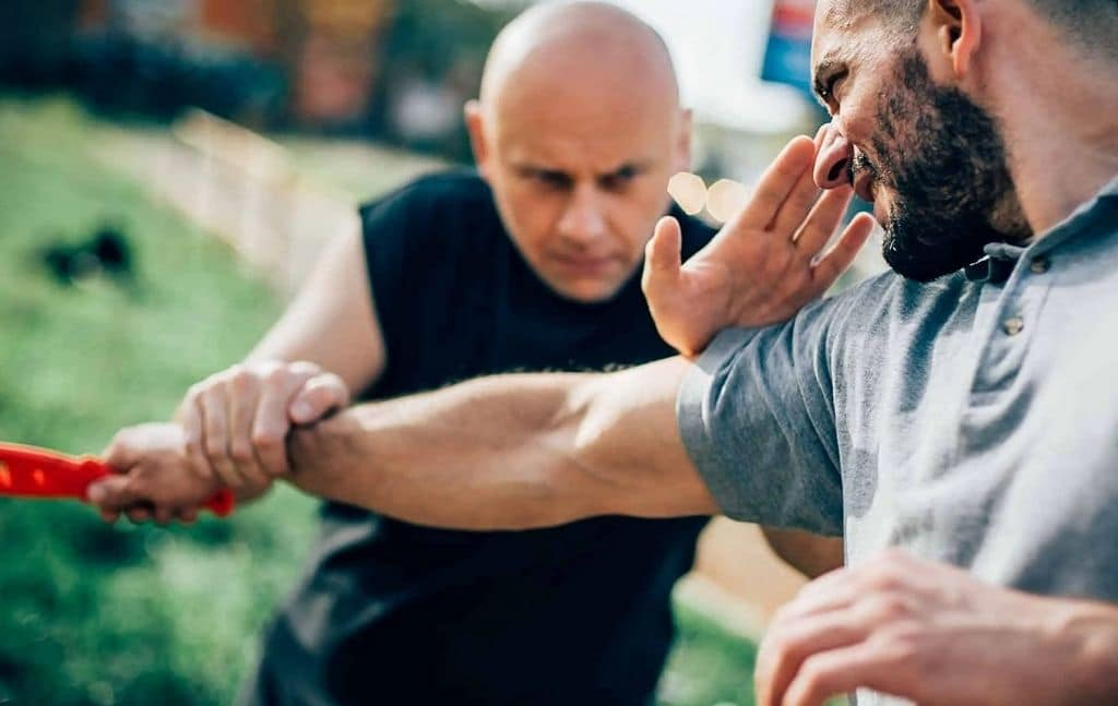 krav maga principles neutralize all threats completely