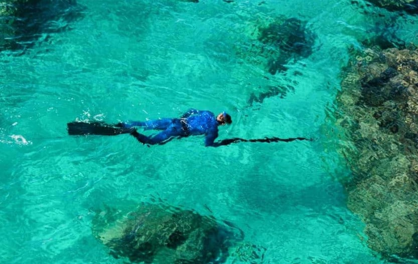 spearfishing for beginners man spearfishing in blue waters