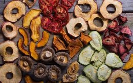 Things to Know Before You Dehydrate Food